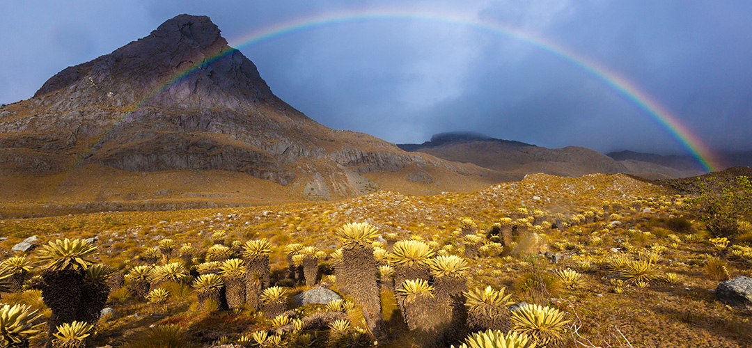 15 Kolumbien Paramo Landschaft Im Cocuy Nationalpark